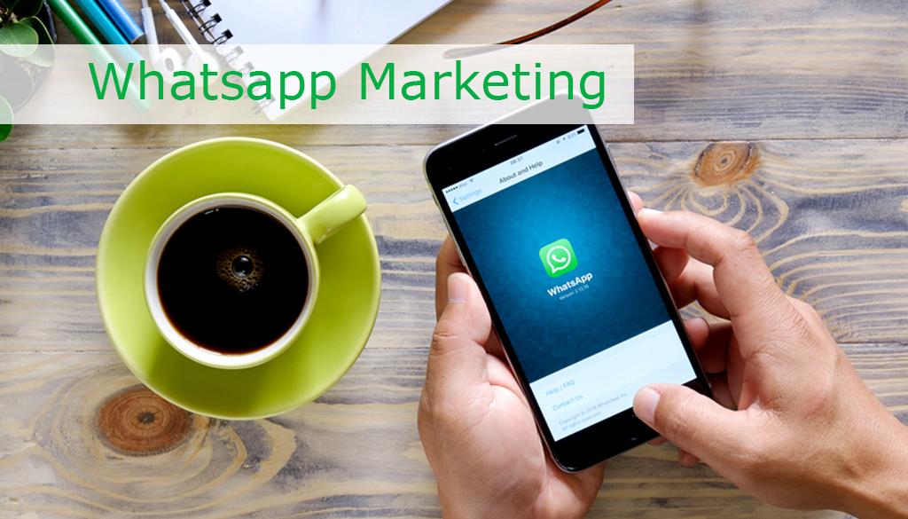 whatsapp-marketing-curso-ferramenta-web-online